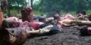 Neuer Film 2012: Legend of Hell
